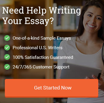 order custom essay example