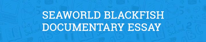 seaworld blackfish documentary essay