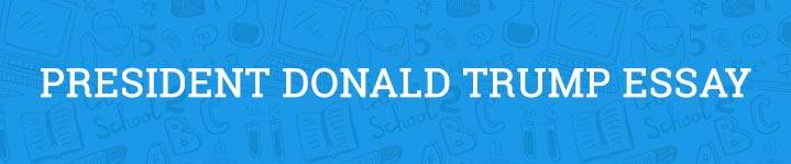 president donald trump essay