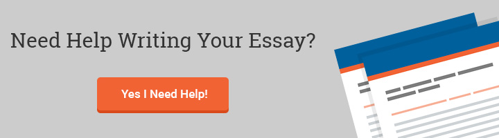 enron ethics and leadership failures essay words custom essay writing