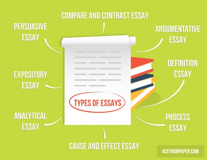 What Is Thesis Statement In Essay Different Types Of Essays Theme For English B Essay also Essay Paper Writing Different Types Of Essays To Write  Aceyourpapercom Essay On High School Dropouts