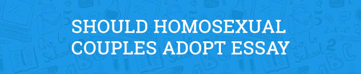 should homosexual partners adopt