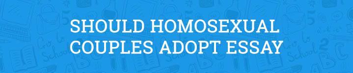 should homosexual partners adopt