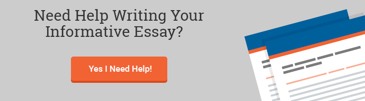 informative essay writing help